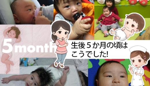 【寝返り期の親子必見!】 子どもの身体機能と興味を伸ばす腹ばい遊びのすすめ