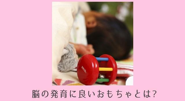 【子どもの性格も左右する!】0歳児から1歳児の脳に良いおもちゃの5つのポイント
