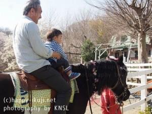 KNSL家族 (6)