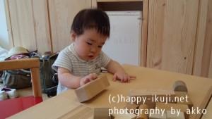 akko_生後6か月~10か月 (6)