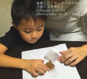 Nみっちゃん (4)