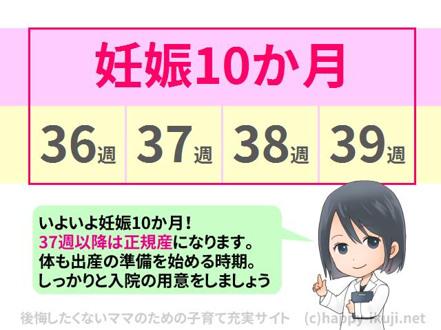 月齢週数対応表_10_doctor